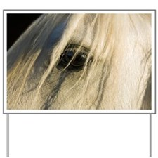 Close up of horse's eye Yard Sign
