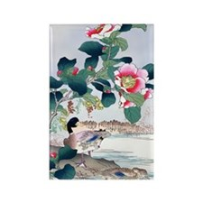 19th C Mallard Duck Camellias asi Rectangle Magnet