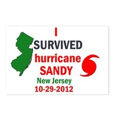 I SURVIVED HURRICANE SAND Postcards (Package of 8)
