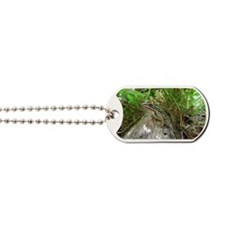 Frog on a log Dog Tags