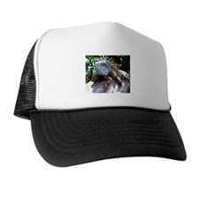 Iguana Talk! Trucker Hat