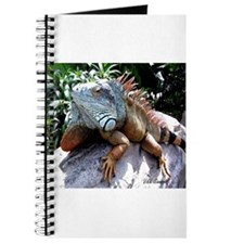 Iguana Talk! Journal