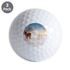 Small Icelandic horses in snow during w Golf Ball