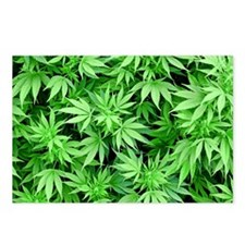 Marijuana Postcards (Package of 8)