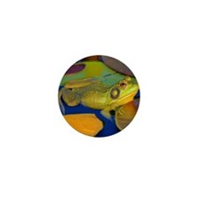 Gettin the Bullfrog Eye Mini Button