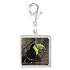 Keel-Billed Toucan Silver Square Charm