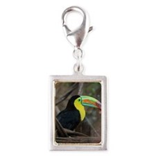 Keel-Billed Toucan Silver Portrait Charm