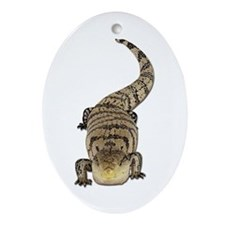 Blue Tongue Skink Oval Ornament