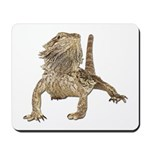 Bearded Dragon Photo Mousepad