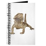 Bearded Dragon Photo Journal
