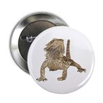 Bearded Dragon Photo Button