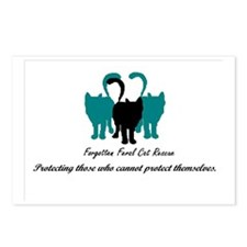 Forgotten Feral Cat Rescu Postcards (Package of 8)