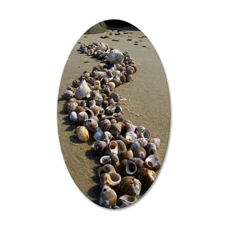 Seashells on the Seashore 35x21 Oval Wall Decal