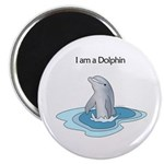 I am a Dolphin Magnet