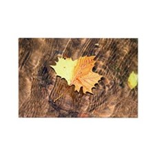 Float Leaf Rug Rectangle Magnet