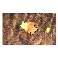 Float Leaf Rug Decal
