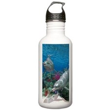 ow1_3_5_area_rug_833_H Water Bottle
