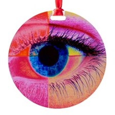 Human eye Ornament