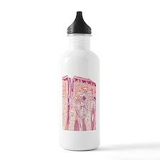 Human skin section, li Water Bottle