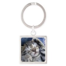 Sleeping Kitten Square Keychain