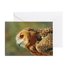 Eagle owl ready to take off Greeting Card