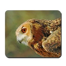 Eagle owl ready to take off Mousepad