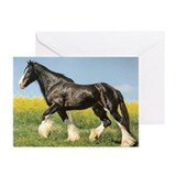 Shire Horse Greeting Cards (Pk of 10)