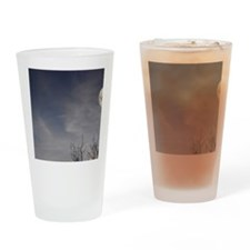 Elephant with tree and full moon, P Drinking Glass