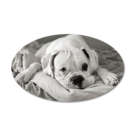 Dog lying on bed. 35x21 Oval Wall Decal