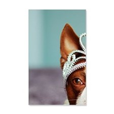Red boston terrier wearing crown  Wall Decal