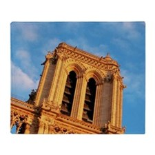 Low angle view of a building, Paris, Throw Blanket