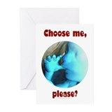Choose me, please? Greeting Cards (Pk of 10)
