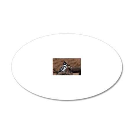 A Pied Kingfisher (Ceryle ru 20x12 Oval Wall Decal