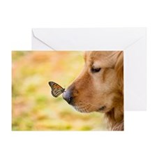 Butterfly on Golden Retriever nose Greeting Card