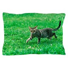 Ocicat Pillow Case