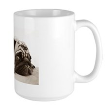 Close up of a staring pug as it lies la Mug
