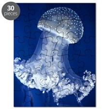 Jellyfish in aquarium. Puzzle