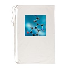 Serotonin neurotransmitter, molecular  Laundry Bag