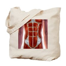 Abdominal Muscles Tote Bag