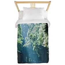 A road around a shrine,Nikko. Twin Duvet