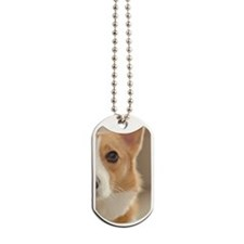 Cute Corgi Dog Tags