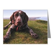 German Shorthair Pointer, do Note Cards (Pk of 10)