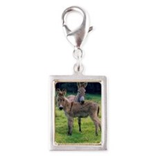 Mother and baby donkey in fi Silver Portrait Charm