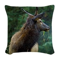 Young male bull elk stands in  Woven Throw Pillow