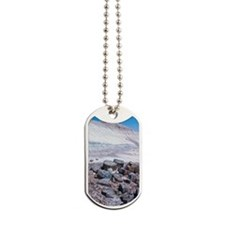 Petrified Forest National Park, Arizona,  Dog Tags