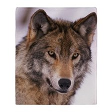 Head shot of gray wolf Throw Blanket