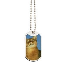 abyssinian cat: usual colour Dog Tags