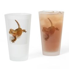 Crested gecko lizard Drinking Glass