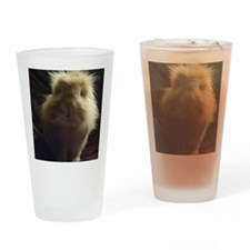 Lionhead rabbit on chair Drinking Glass