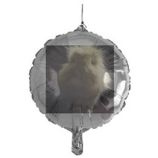 Lionhead rabbit on chair Balloon